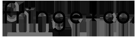 Fringe + Co. fashion brand