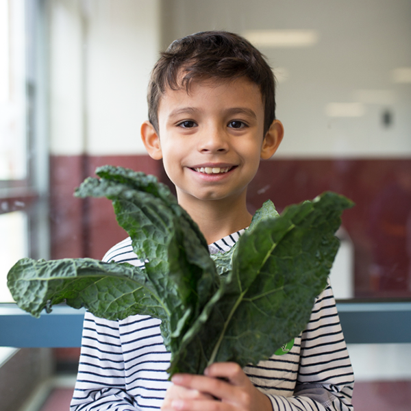 Young boy holding kale